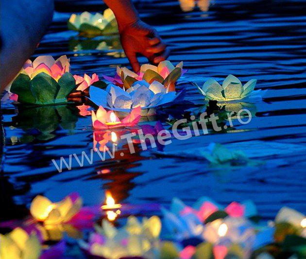Lampion de apa