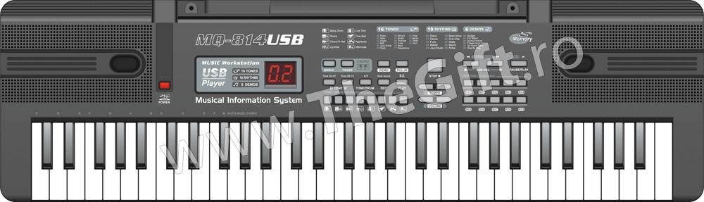 Orga electronica MQ-814 USB cu 61 de clape